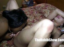 La puta está a cuatro patas y el tío se la folla en la cogiendo con la señora boca.